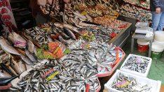 Hangi Mevsimde Hangi Balık Yenir ?