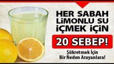 Limonlu Su İçmek İçin 20 Sebep!
